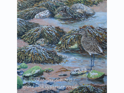 Curlew Camoflage, painting in acrylics