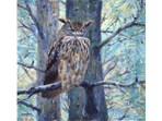 Soft & Sharp - painting of Eagle Owl in acrylics
