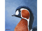 Red-breasted Goose painting