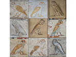 Owls of Ancient Egypt
