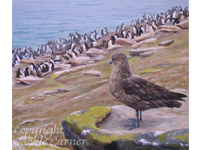 """The Lookout"" acrylic painting of a skua and penguin colony"
